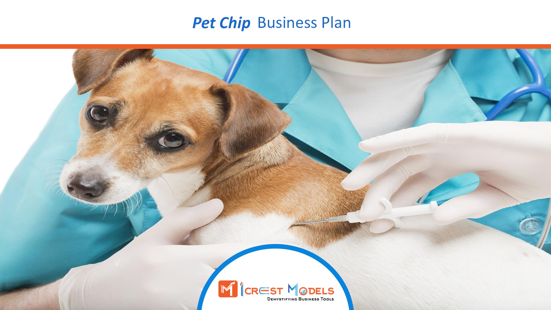 Business Plan For Pet Chip Business