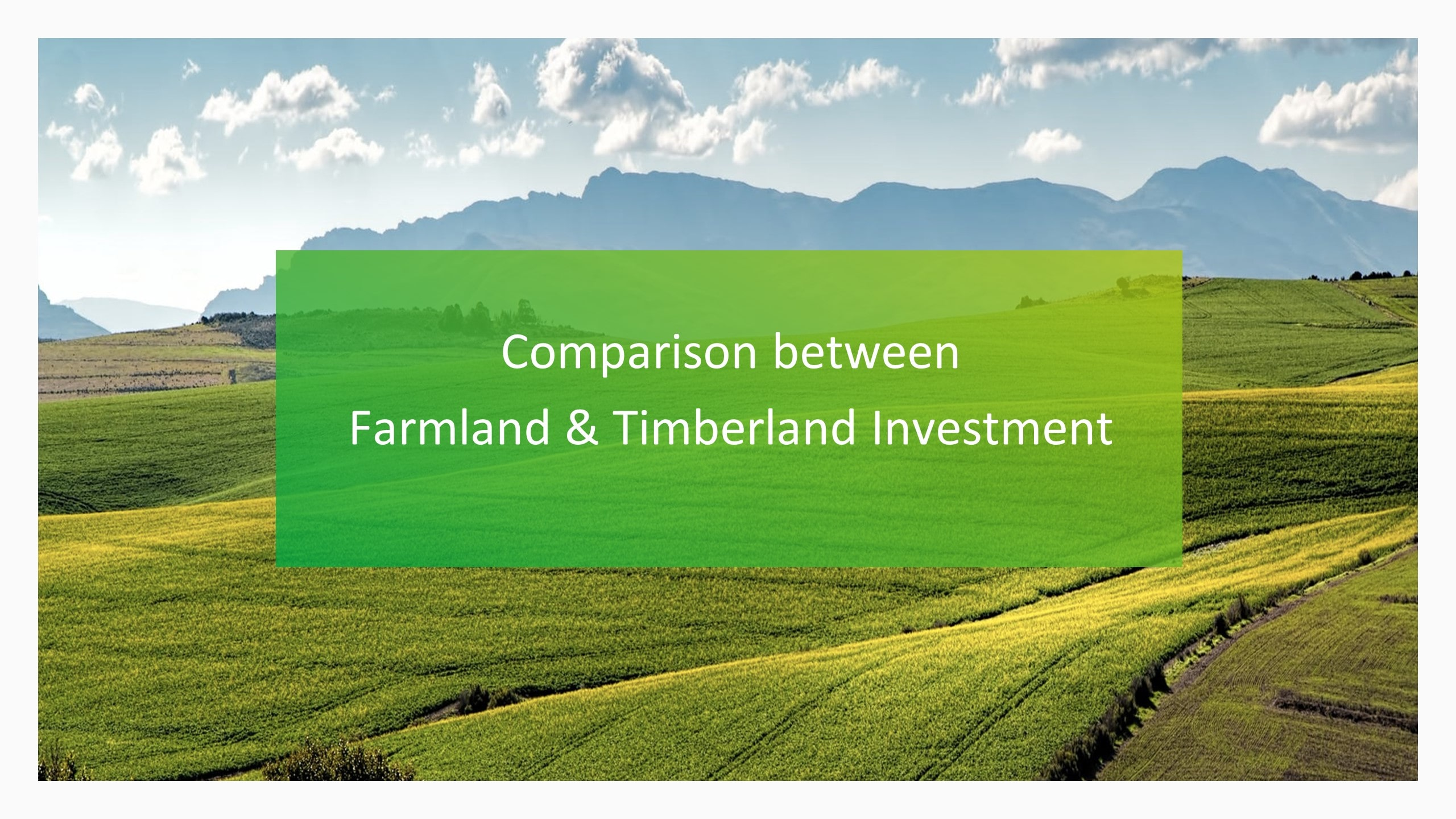 Research Report on Asset Class (Farmland/ Timberland)