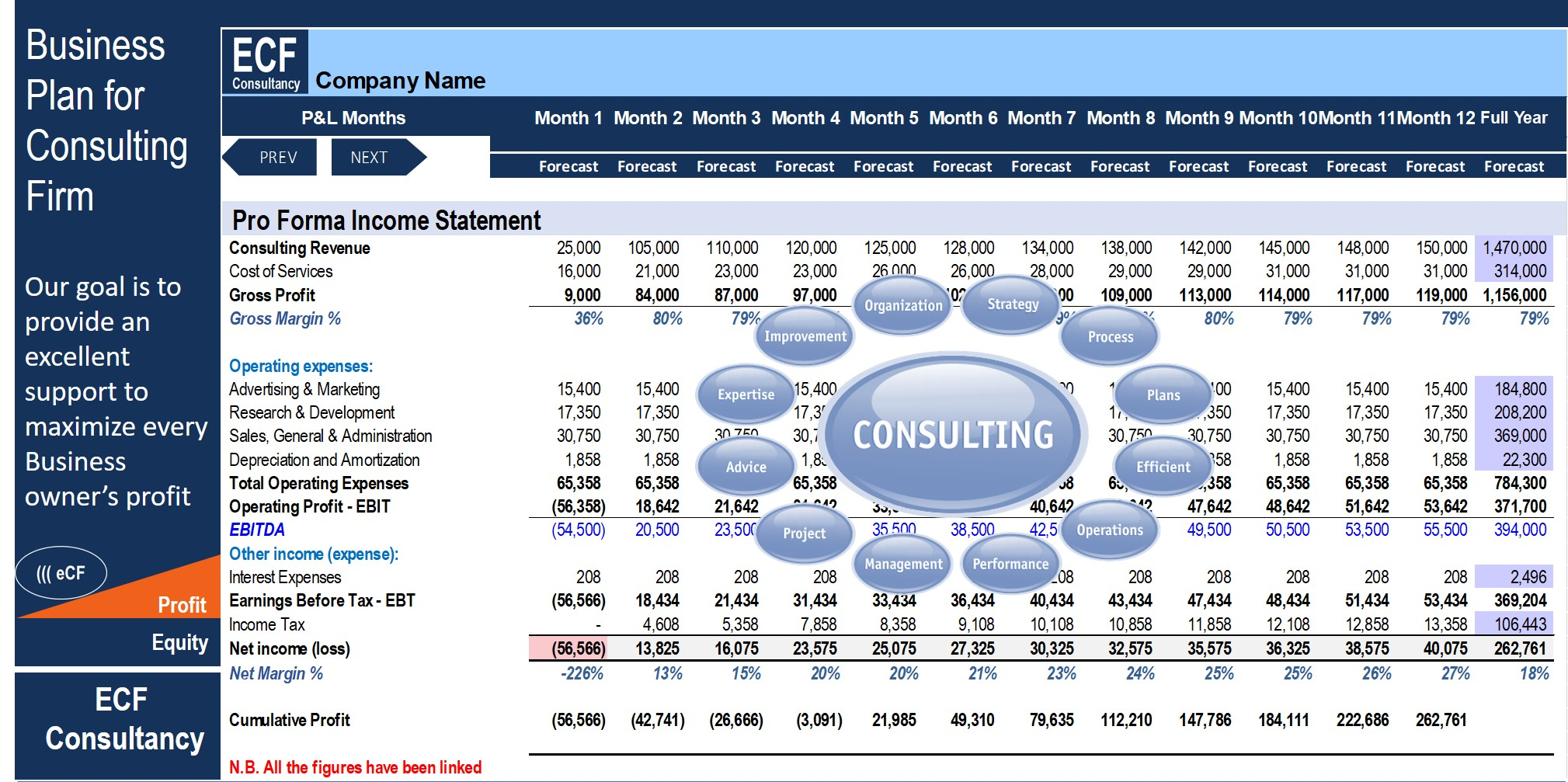 Startup Business Plan - Consulting Firm