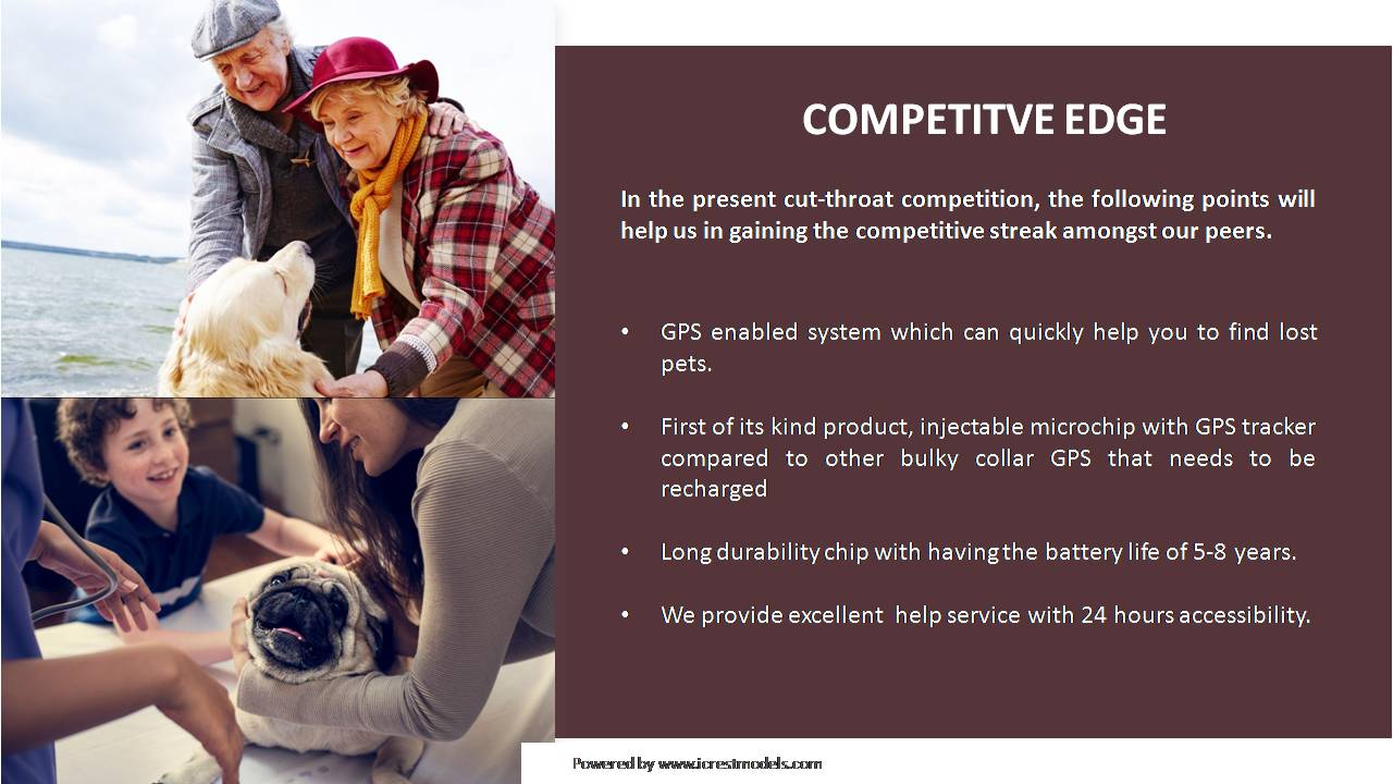 Investor Pitch Deck of a Pet Chip Business